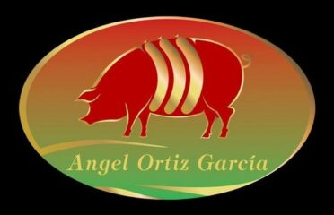 ANGEL ORTIZ GARCIA S.L.